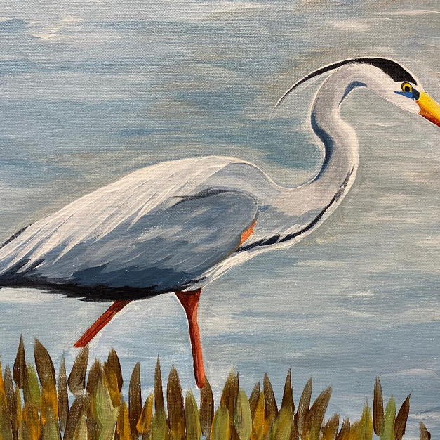Heron in Marsh Canvas