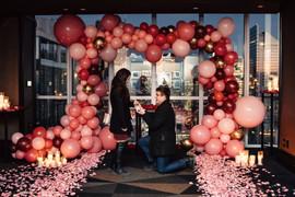 Toronto Proposal