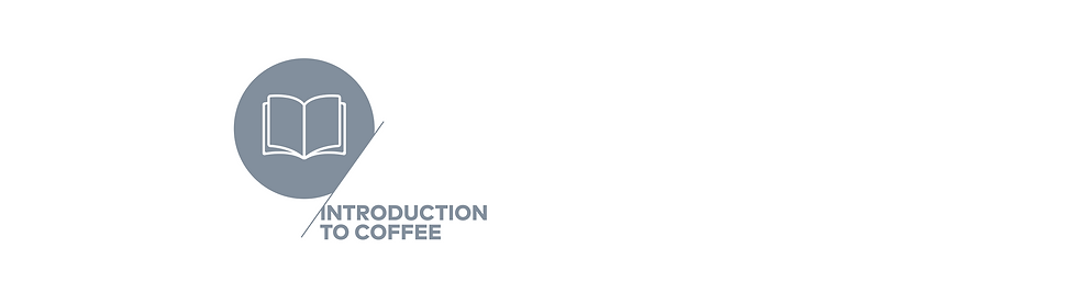 イントロダクション コーヒー