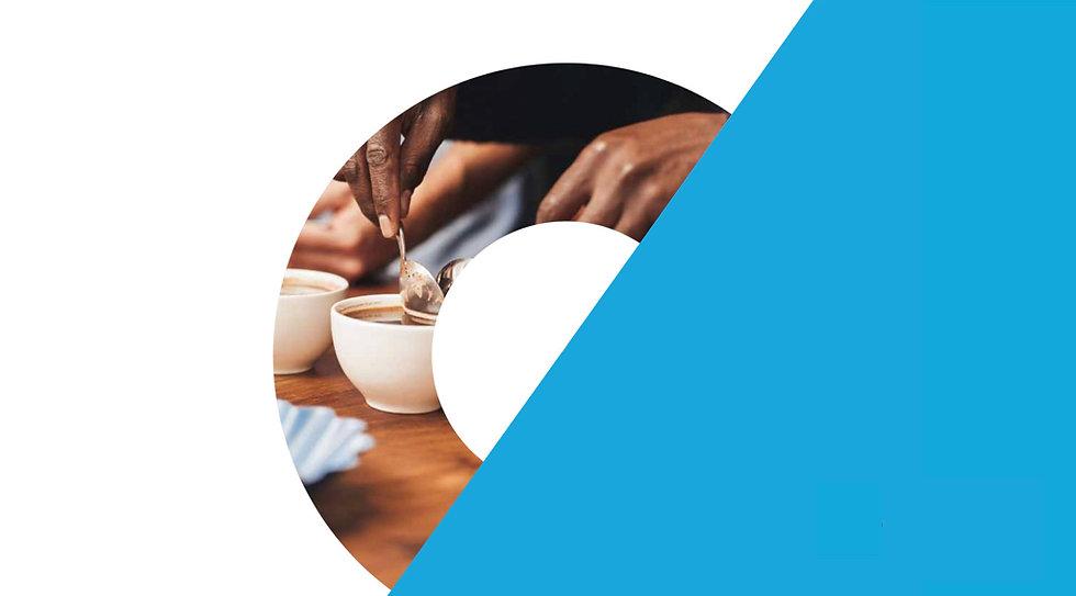 SCA バリスタ 資格 コーヒースキルズプログラム