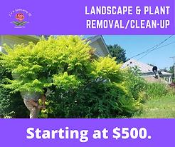 Landscape Removal.png