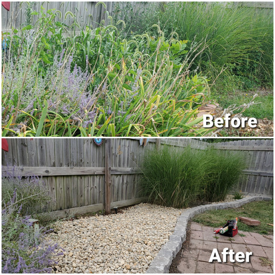Overgrown Bed Clean-Up, Paver & Rock Install