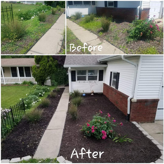 Bed Clean-Up, Mulch Install