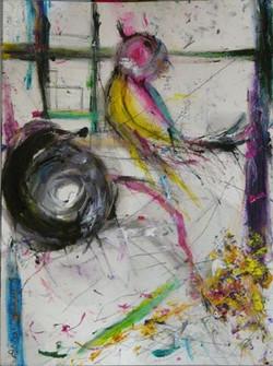 Un Oiseau Coloré Sort de sa Cage