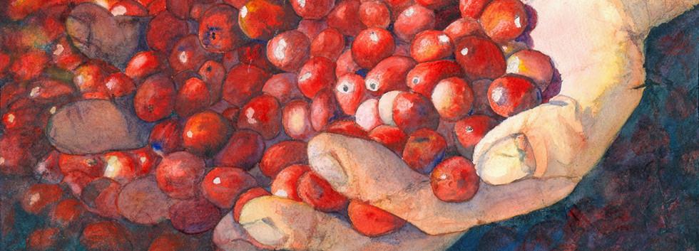 Récolter, II.jpg