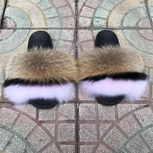 Pink Sorbet Fox