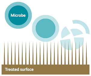 Microbe.png