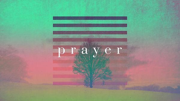 lonely-tree-prayer-still-hd.jpg