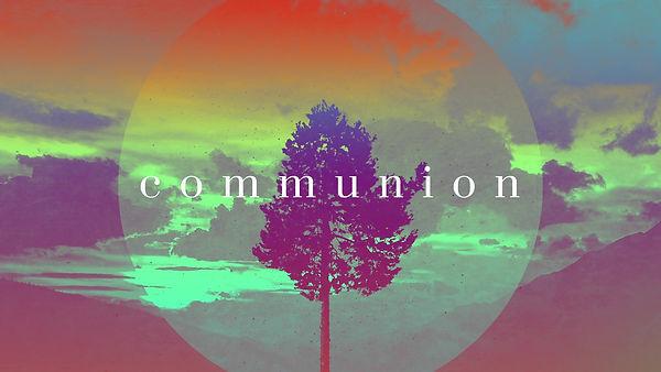 lonely-tree-communion-still-hd.jpg