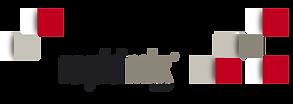 Rapidmix_logo.png