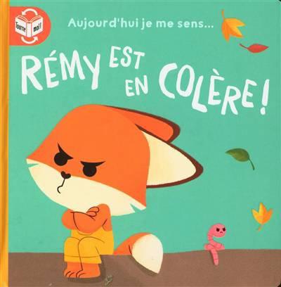 Livre histoire- Rémy est en colère!