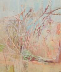 Bush and picnic rock, Kruger
