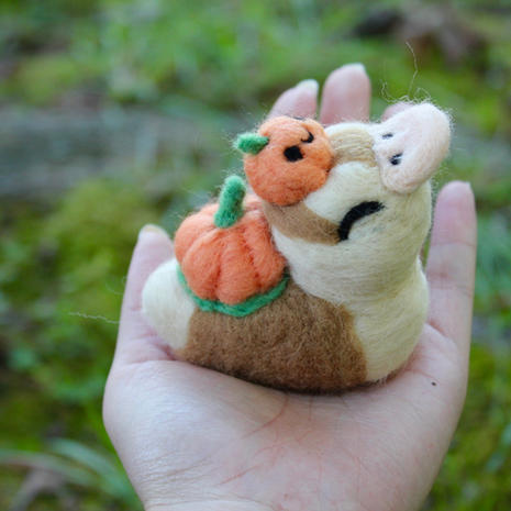 Pumpkin Turtle Duck Only Available Oct 2020