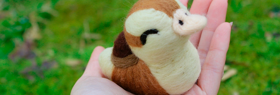 Felted Closed-Eyes Baby Turtle Duck