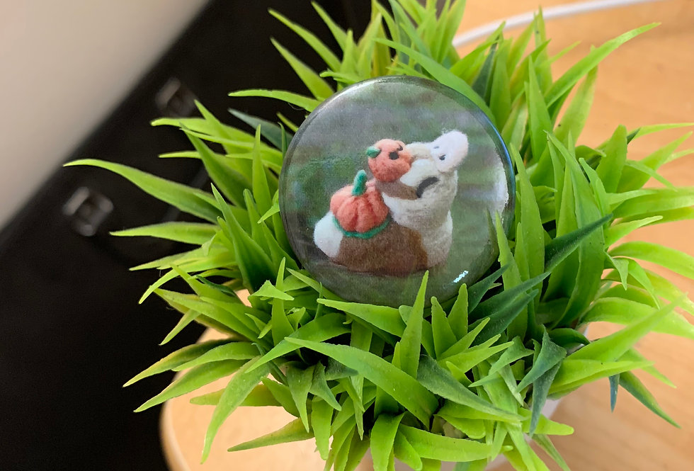 "Pumpkin Turtle Duck 1.5"" Button"