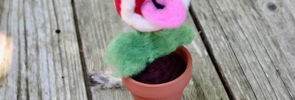 Felted Chomp Plant in Clay Pot