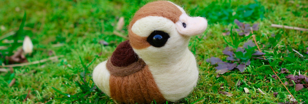 Felted Baby Turtle Duck