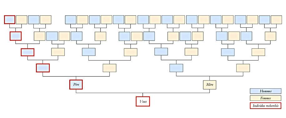 GenealogiePatronymique.jpg