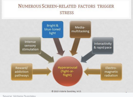Numerous Screen-Related Factors Trigger stress