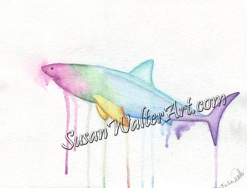 Ocean Guardian Shark
