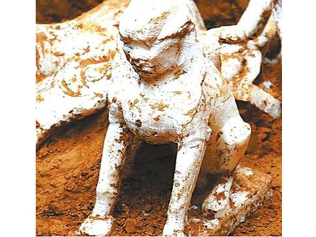 Discovery of sphinx in northern China tomb presents something of a riddle