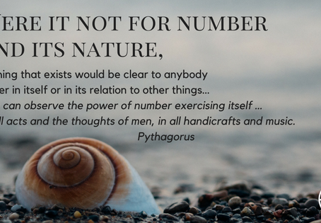 THE SECRET NATURE OF NUMBERS