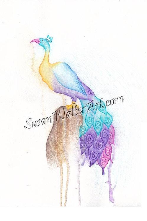 Air Guardian Series: Peacock