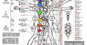 Occult Anatomy