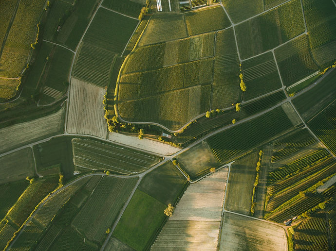 aerial-view-of-beautiful-agro-fields-in-