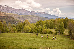Horse Riding in the Valley