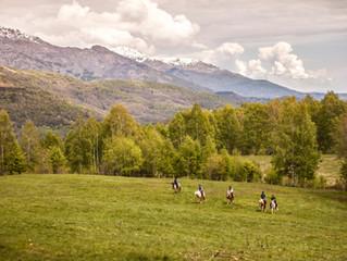 Seeking Trail Ride Volunteer
