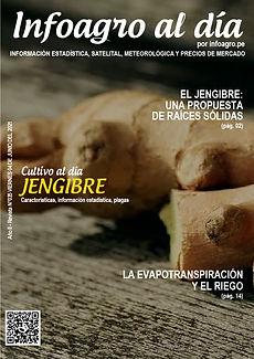 i+D_revista035_jengibre_1.jpg