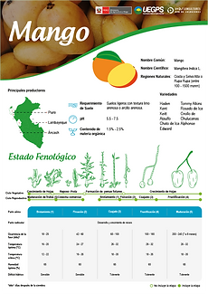 infoagro_wix_cultivos_Mango.png