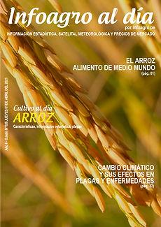i+D__boletin026_arroz_1.jpg