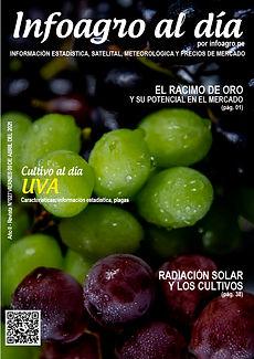 i+D__revista027_uva_1.jpg