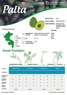 infoagro_fichas-tecnicas_palta.jpg