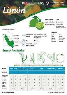 infoagro_fichas-tecnicas_limon.jpg