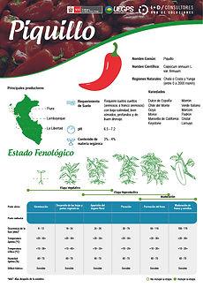 infoagro_fichas-tecnicas_piquillo.jpg