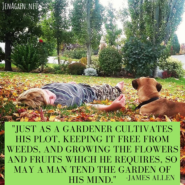 Just as a gardener cultivates his plot,
