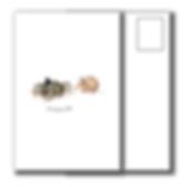 Product Mock Ups_Overdressed Crab Postca