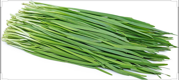FRESH CHIVES