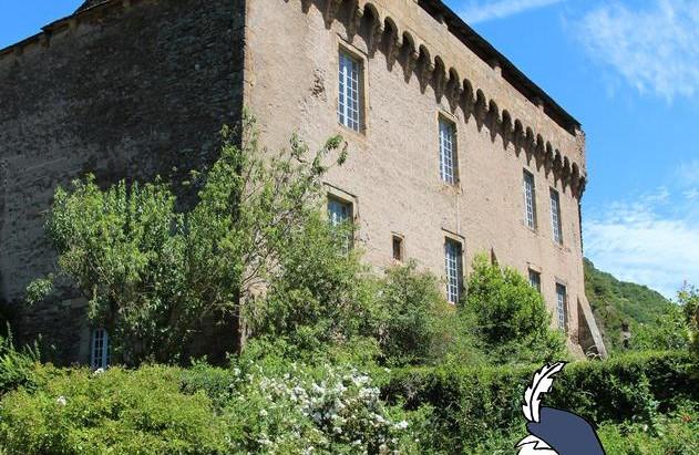 Balade en Aveyron : Brousse-le-Château
