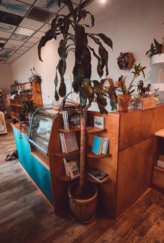 Ziemiosfera zero waste store counter