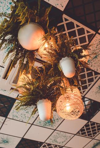 Ziemiosfera zero waste indoor decoration