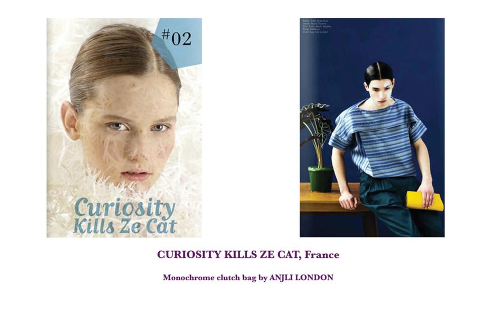 CURIOSITY KILLS ZE CAT, France
