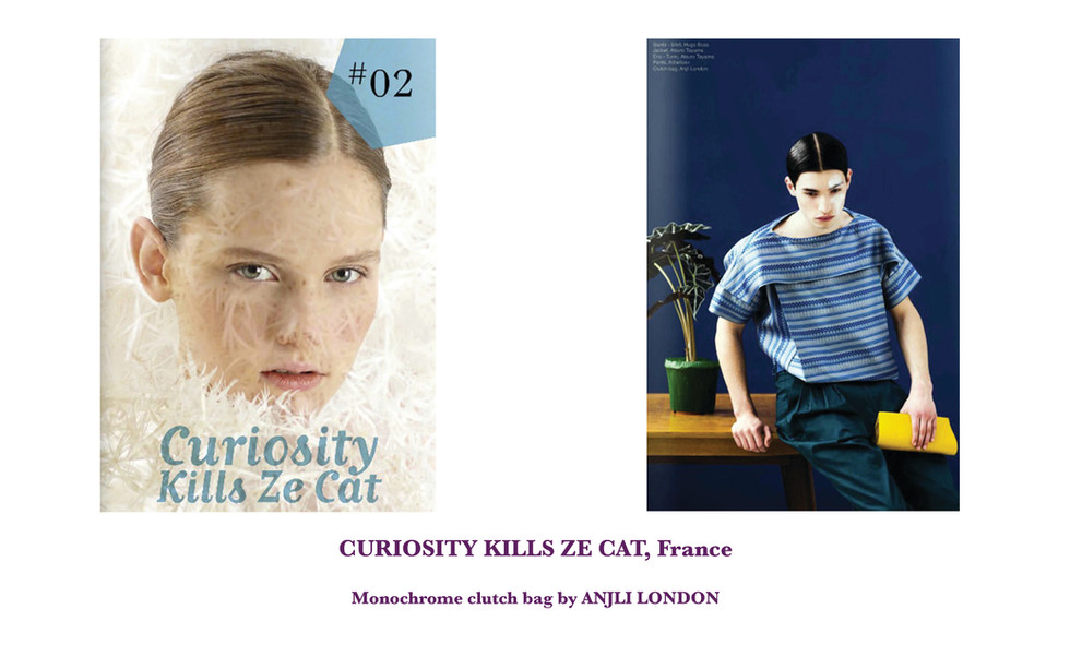 CURIOSITY KILLS ZE CAT, France