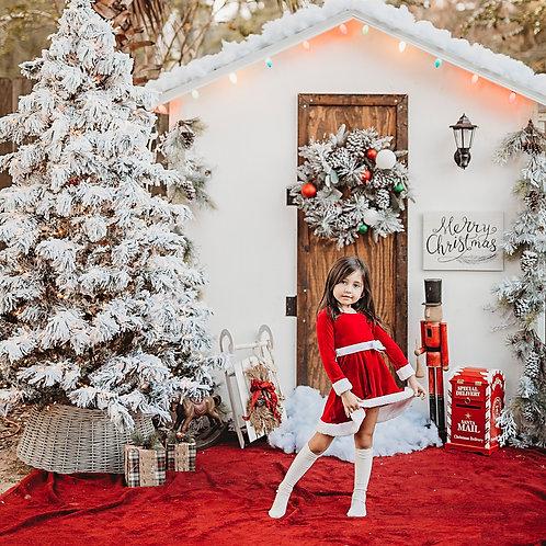 Houston Christmas Minis