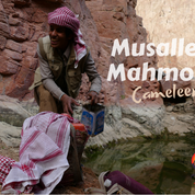 Mussalem Mahmoud is a 18 year old cameleer & apprentice guide on the RSMT. He spent several months helping the Bedouin team developing the trail before he began working on it. He lives in a desert village with his mother today but like many young Bedouin spends long periods in Hurghada for school. The RSMT gives a different kind of education. Every day Musallem walks with an older Bedouin leading a caravan of camels carrying water, food & bags to the evening campsite. He's replenishing jerry cans for the journey here, collecting water from the springs below Jebel Um Anab, filtering debris out using a Bedouin headscarf or 'shemagh'.