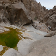 After the Plain of Monfia the trail enters the shadowy gorge of Wadi Showug. Wadi Showug cuts down Jebel Shayib's north face & pools of water dot its rocky bottom after a recent rain.