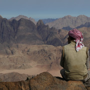 Musallem resting on a high ledge, with the rugged highlands of Ein Ruweishid ahead of him.